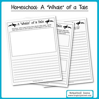 Brightly Street Homeschool Science Orca Killer Whales Unit sample 003 (Sheet 3)
