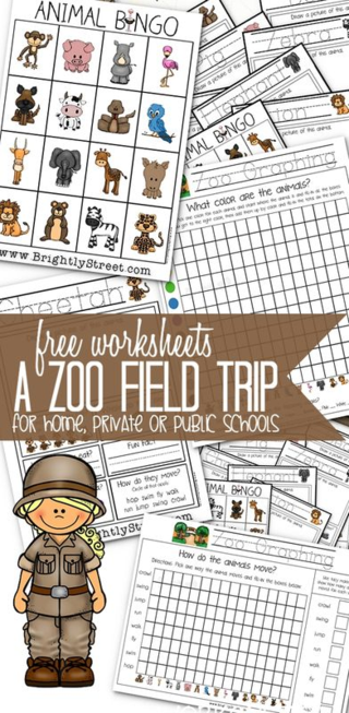 Zoo Field Trip Worksheets